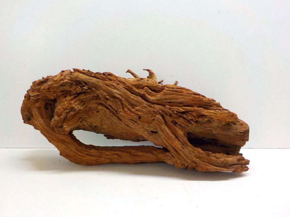 AQUARISTIKWELT24 No. 7941 XXL Mangrove Root Dimensions 90 x 34 x 40 cm
