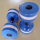 The Wolf Moon® Water Aerobic Exercise Foam Dumbbells Pool Resistance 1 Pair, Water Fitness Exercises Equipment for Weight Loss Blue with a carry bag