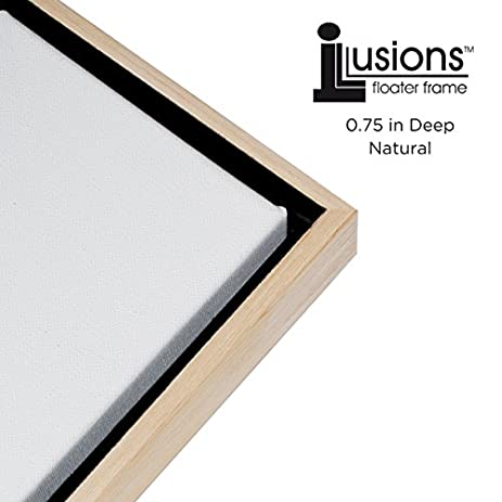 Amazon illusions floater frame for 34 canvas 24x24 solid illusions floater frame for 34quot canvas 24x24quot solutioingenieria Choice Image