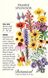 Prairie Splendor Flower Seeds - 12 grams - Botanical Interests