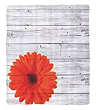 Chaoran 1 Fleece Blanket on Amazon Super Silky Soft All Season Super Plush Vintage Home Decor et Hot Red Daisy Flowers on Rustic Wood Wall Design Picture Garden Gerbera Plant Accessories Collection Fa
