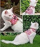 Yizhi Miaow Kitty Harness and Leash for Walking