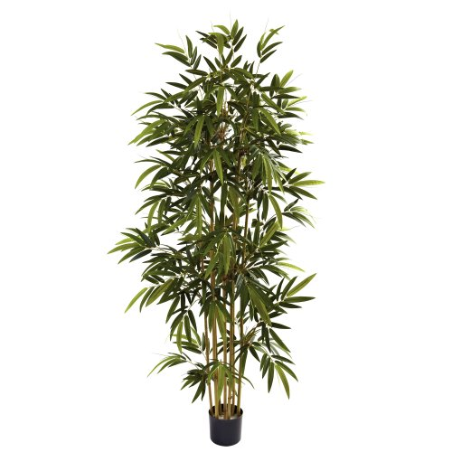 Nearly Natural 5362 Bamboo Tree, 6-Feet, Green (Plants Sale Silk Bamboo)