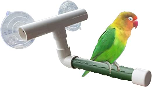 Bird Parrot Stand Perch Shower Perch Standing Toy Portable Suction Cup Parrot Bath Stands Suppllies Holder Platform Parakeet Window Wall Hanging Play (2 Suction Cups Green)