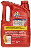 Valvoline 5W-20 MaxLife High Mileage Motor Oil - 5qt (782253)