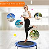38 inch Rebounder Trampoline Max Load 220lbs Indoor Garden Workout Cardio Training Mini Trampoline For Gymnastic,Ultrasport, Exercise with Safety Pad