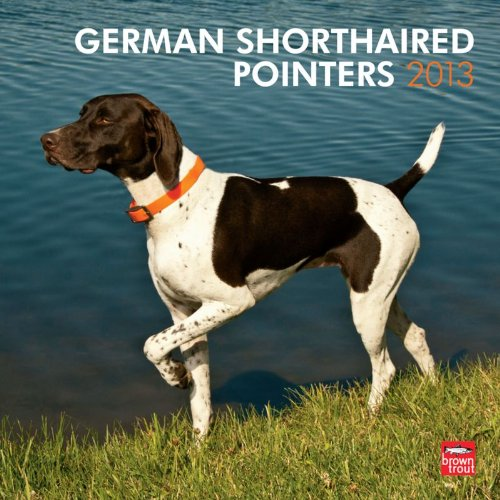 Pointer 2013 Calendar - German Shorthaired Pointers 2013 Square Wall (Multilingual Edition)