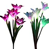 Outdoor Solar Garden Stake Lights - 2 Packs New Upgraded Solar Powered Decorative Lights with 8 Lily Flower, Multi-Color Changing Lily Solar Flower Lights for Patio, Yard Decoration (Purple and White)