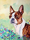 Caroline's Treasures 7222CHF Red and White Boston Terrier Flag Canvas, Large, Multicolor For Sale