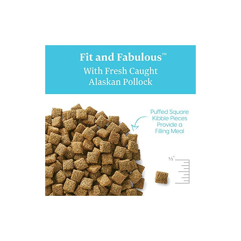 dog supplies online solid gold - fit & fabulous - potato-free fresh caught wild alaskan pollock - holistic weight control adult dry dog food - 24 lb bag