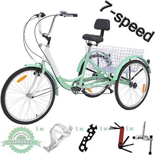 VANELL 71 Speed Tricycle