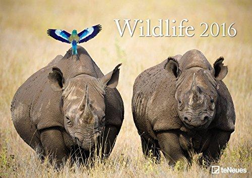 Wildlife 2016