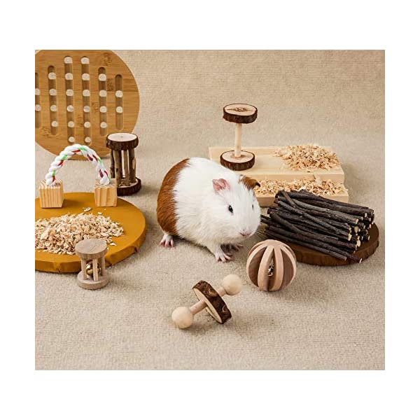3 Pcs Pack of 7 /& Rabbit Guinea Pig Pillow Accessories Sleep JanYoo Guinea Pig Toys Chinchilla Hamster Roller Rat Chews Toys