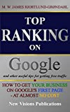 TOP RANKING on Google and other useful tips for getting free traffic: IT-strategies for beginners