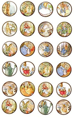 Beatrix Potter 24 glossy 1.5
