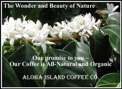 100% Kona Coffee Sampler Gift for Fathers Day, Ground Coffee, Brews 60 Cups by Aloha Island Coffee