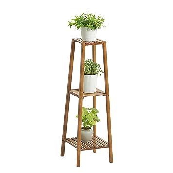 Amazoncom Sandm Flower Stand Plant Display Standfree Standing