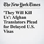 They Will Kill Us': Afghan Translators Plead for Delayed U.S. Visas | Emmarie Huetteman