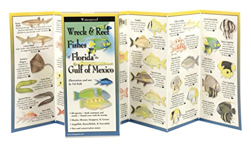 Wreck & Reef Fishes of Florida & Gulf of Mexico (Foldingguides)