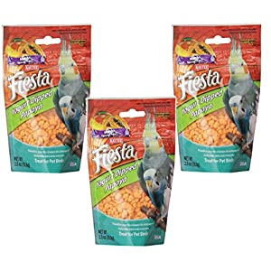 (3 Pack) Kaytee Fiesta Mango Flavored Yogurt Dipped Papaya Bird Treat, 2.5 Ounce each 87