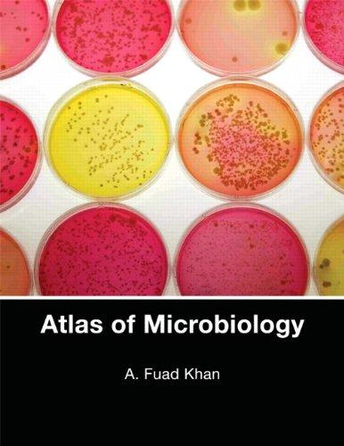 Atlas of Microbiology