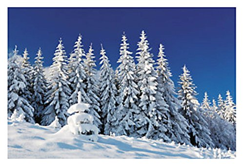 9 FOOT Frozen Snow Covered Mountain Trees Wall Mural Scene Setter Photo Backdrop Holiday Xmas (Snow Scenes Pictures)