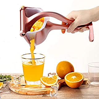 YAUNGEL Manual Fruit Juicer Lemon Press Squeezer Premium Quality Lemon Orange Juicer Portable Fruit Press Squeezer Citrus Extractor Tool- 20 Filter Bags &1 pliers Included(Grey blue)