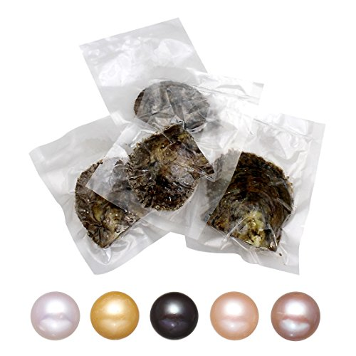 5PC Akoya Cultured Love Wish Pearl Oysters with Pearls Inside Five Colors (9-10mm)