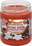 Smoke Odor Exterminator 13 oz Jar Candles Cinnamon Sprinkle, (2) Limited Edition