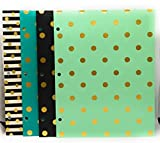 2 Pocket 3 Hole Punched Paper Folder by Greenroom, Size 12 inches (L) x 9.5 inches (W) x .08 inches (D) 4 Pack