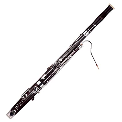 Amazon.com: Bassoon, C Key Bassoon Fagotto Woodwind ...