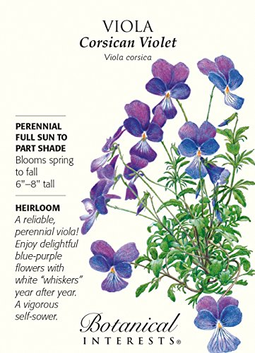 Heirloom Violets (Corsican Violet Viola Seeds - 100 mg - Heirloom)