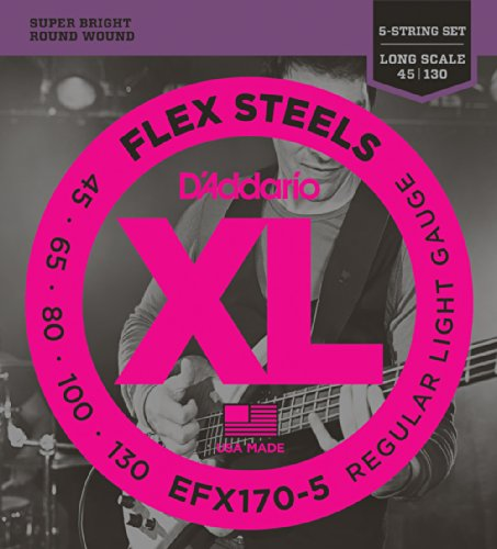 D'Addario EFX170-5 5-String FlexSteels Bass Guitar Strings, Light, 45-130, Long (130 Long Scale)