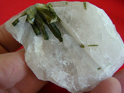 Flo6304 Green Tourmaline Needles in Quartz Matrix