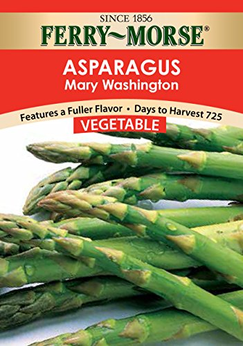 Price comparison product image Ferry Morse Asparagus,  Mary Washington Seeds