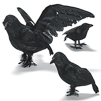 PREXTEX Halloween Decoration Realistic Looking 3 PC Birds Black Feathered Crows Halloween Prop Décor