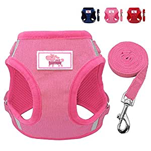 Beirui Reflective Dog Vest & Leash Set - Soft Harness Small Dogs & Cats - Comfort Step-in Mesh Padded Harness 4ft Leash Pet Supplies,Pink Chest 14.5