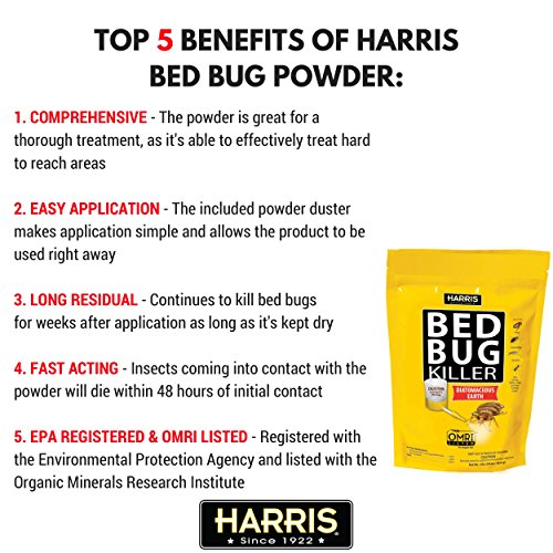 Bed Bug Powder Amazon