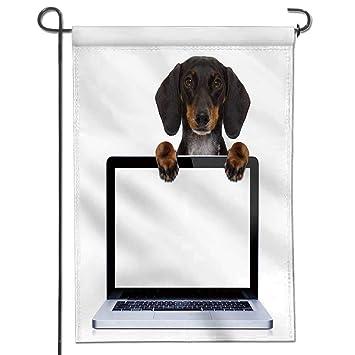 amazon com jiahonghome classic flag dachshund or sausage dog