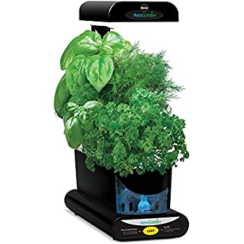 AeroGarden Sprout Gourmet Herb Seed Pod Kit, Black