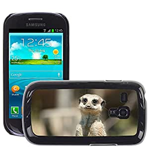Super Stella Slim PC Hard Case Cover Skin Armor Shell Protection // M00104593 Meerkat Animal View Sad Asking // Samsung Galaxy S3 MINI i8190