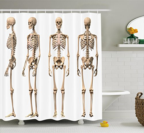 Ambesonne Human Anatomy Shower Curtain, Man Male Human Skeleton Skull Different Perspectives Medical Humor Illustration, Fabric Bathroom Decor Set with Hooks, 70 Inches, Cream by Ambesonne