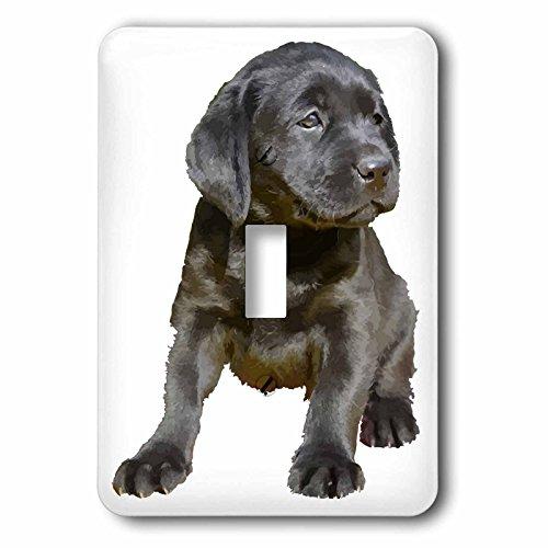 3dRose Taiche - Vector - Labrador Retriever Puppy Dog - Adorable and Cute Black Labrador Puppy Vector - Light Switch Covers - single toggle switch (lsp_264457_1) Labrador Retriever Light