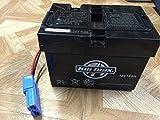 Pacific Cycle KT12V12AHBATT Kidtrax Replacement 12V 12ah Battery