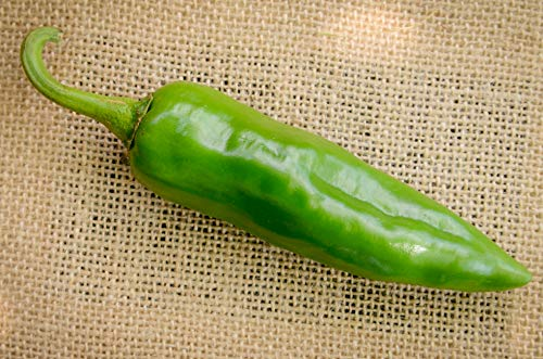 Numex Sandia New Mexico Hatch Chile Pepper Premium Seed Packet]()