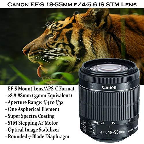 Canon EOS Rebel T7i DSLR Camera Bundle with Canon EF-S 18-55mm STM Lens + 32GB Sandisk Memory + Camera Case + TTL…