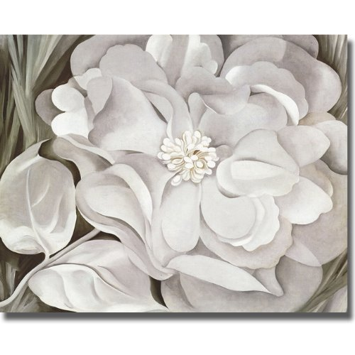 The White Calico Flower by Georgia O'Keeffe Premium Stretched Canvas Art with Hand-Painted Edges (Ready-to-Hang) (Black-Edges)