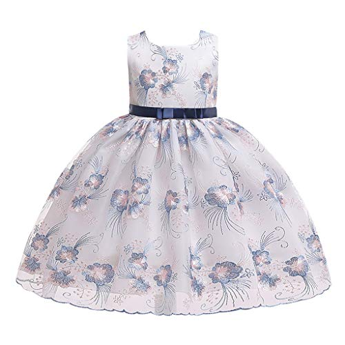 RAINED-Little Girls Sleeveless Lace Embroideried Princess Party Performance Formal Tutu Dress Dressy Flower Girl Dress Navy