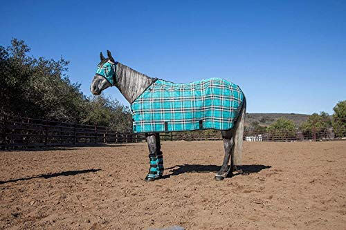Kensington Pony Protective Fly Sheet - Protection Against UV Rays and Insect Bites- Air Permeable Textilene Mesh Fabric, Black Ice Plaid, Size 50