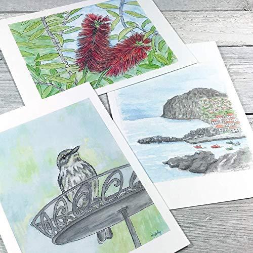 Watercolor Art Print Set 5x7 - Art Postcard Set - Blank Note Cards - Gift Set - From Original Painting - Flower - Madeira - Bird